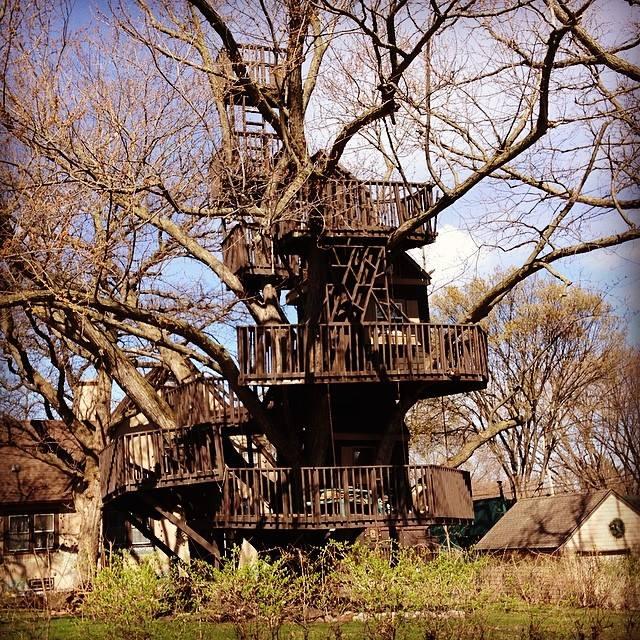 Tuckers Tree House